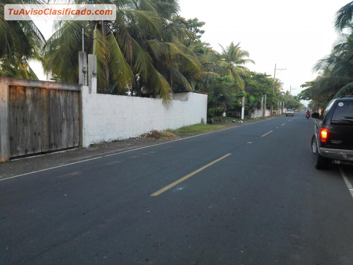 image Menor dominicana del km 14
