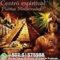 El Chaman y sus plantas medicinales consultanos desde Guatemala whatspp: +502:51575988