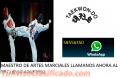Clases con el campeón americano de Taekwondo
