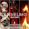 BRUNO PACTADO, CEREMONIAS DE AMOR (00502)33427540