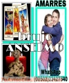BRUJO ANSELMO,SALUD DINERO AMOR SUERTE (011502)33427540